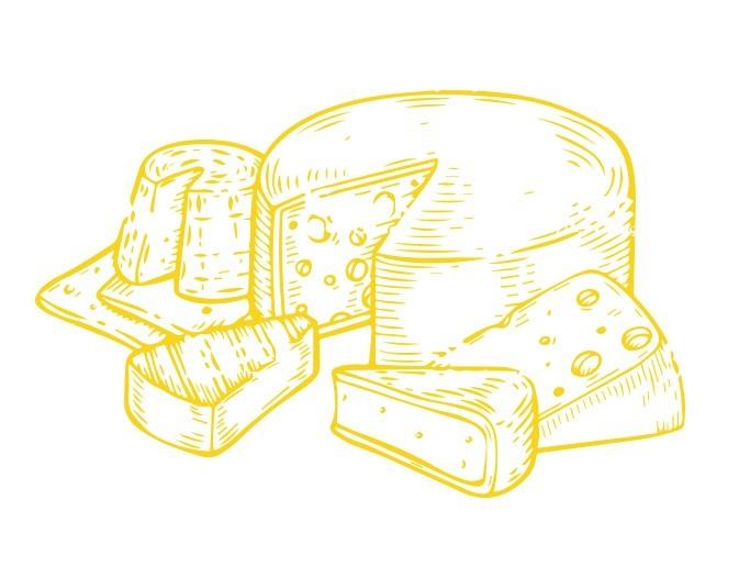 Illustration d'une meule de fromage et pointe de fromage